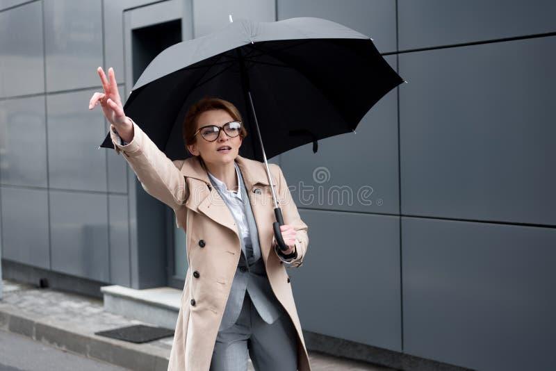 时髦的外套的女实业家有伞的呼吁出租汽车 图库摄影