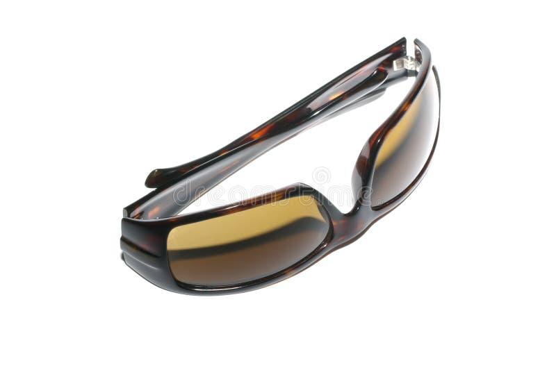 时髦的太阳镜 免版税库存照片