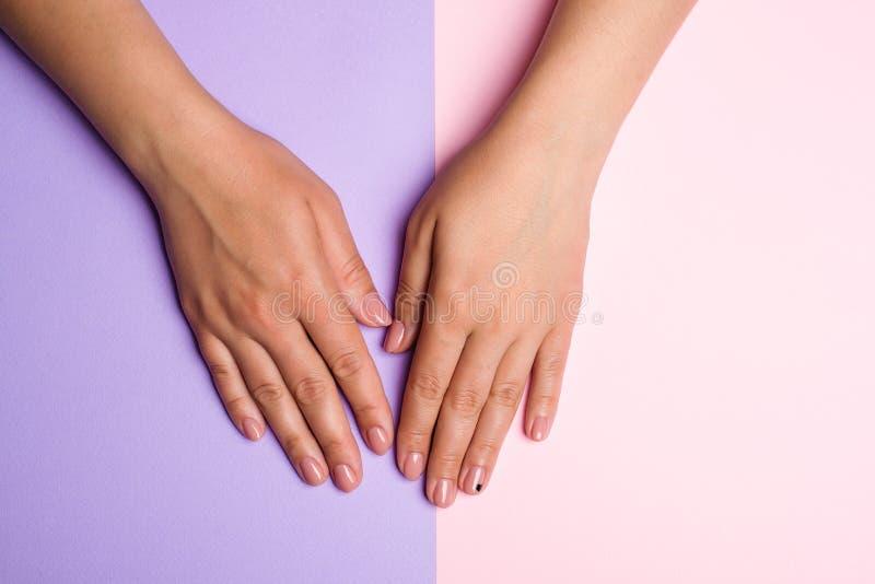 时髦的时髦妇女修剪 手和钉子关心 有完善的粉红彩笔钉子的女性手在五颜六色的背景 被修剪的w 免版税库存照片