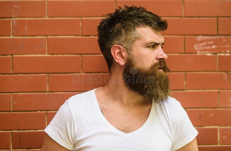 时髦的有胡子的行家 胡子修饰从未是很容易 胡子关心把戏将保留您面毛看 库存照片