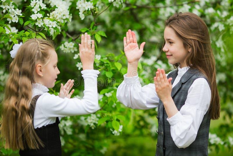 时髦的校服的女孩在开花的苹果公园使用户外 库存图片
