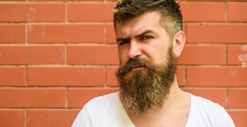 时髦的饰物胡子 胡子修饰从未是很容易 胡子关心把戏将保留您面毛看 库存照片