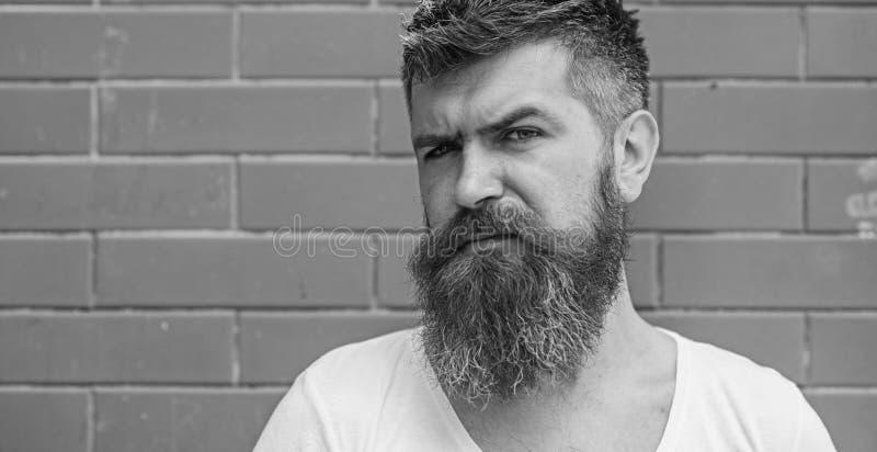 时髦的饰物胡子 胡子修饰从未是很容易 胡子关心把戏将保留您面毛看 免版税库存图片