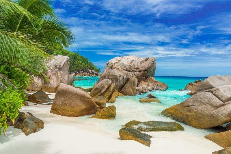 昂斯市Patates -在海岛拉迪格岛,塞舌尔上的热带海滩 图库摄影