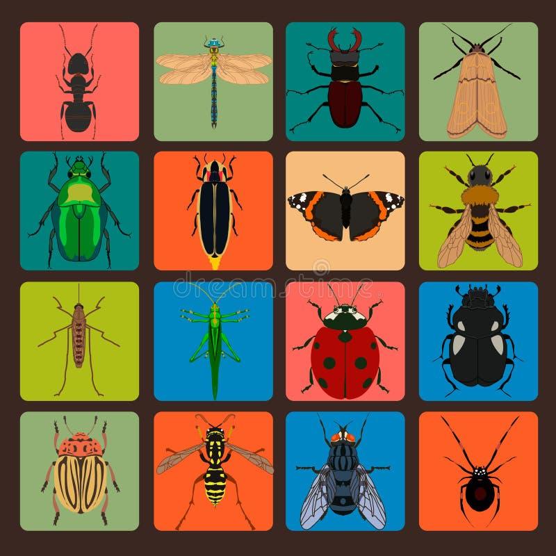 昆虫与臭虫蚂蚱蜘蛛飞行蚂蚁蟑螂Bu的标志集合 皇族释放例证