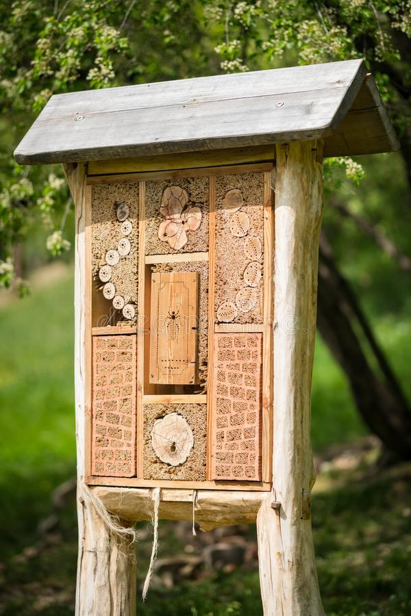 昆虫旅馆-为臭虫和孤零零昆虫蜂做的木房子,黄蜂, 库存照片