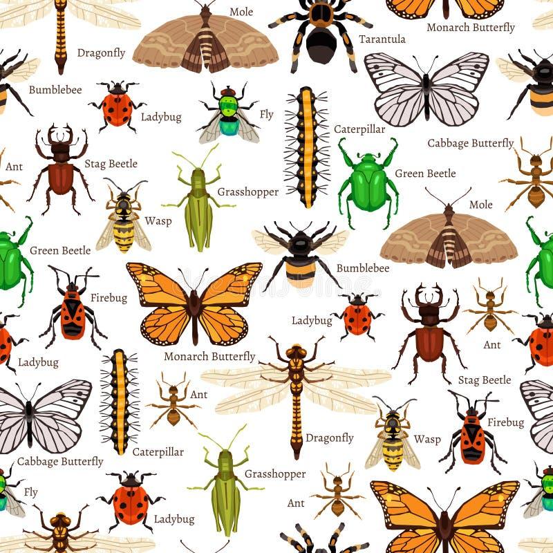 昆虫无缝的样式 向量例证