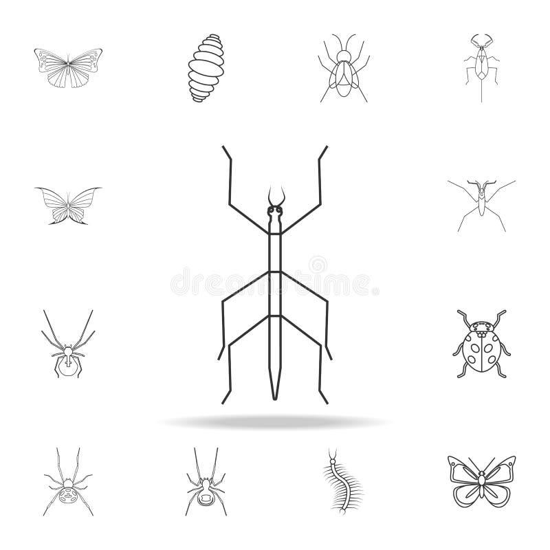 昆虫棍子象 详细的套昆虫线例证 优质质量图形设计象 其中一个汇集象fo 向量例证