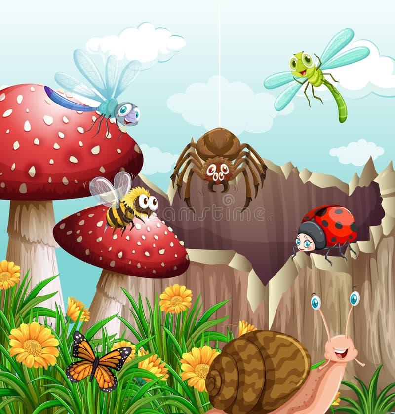 昆虫的不同的类型在庭院里 库存例证