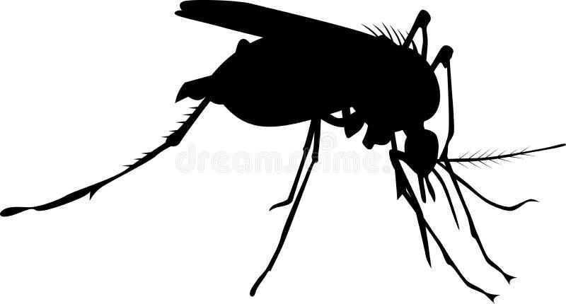 昆虫蚊子剪影 库存例证