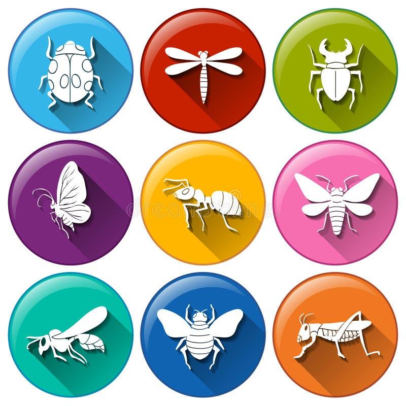 昆虫象 库存例证