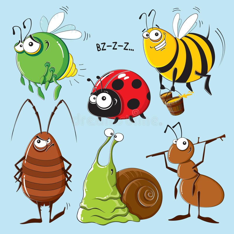 昆虫 向量例证