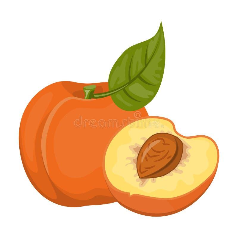 明亮传染媒介套五颜六色的一半和整个水多的桃子 在白色背景隔绝的新鲜的动画片桃子 汁液 向量例证