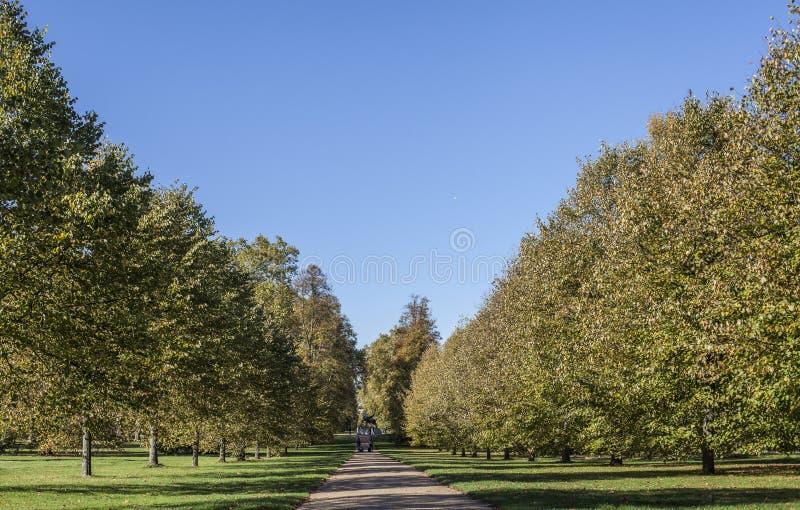 明亮和晴朗的10月在伦敦-一条路的看法在有一天空蔚蓝的海德公园作为背景 免版税库存照片