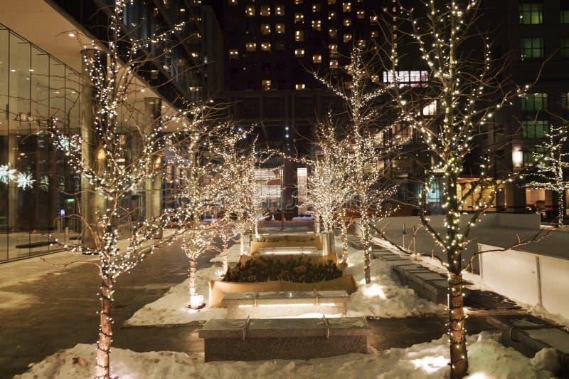 明亮地被点燃的圣诞节在街市多伦多装饰了在一个摩天大楼前面的胡同夜 库存照片
