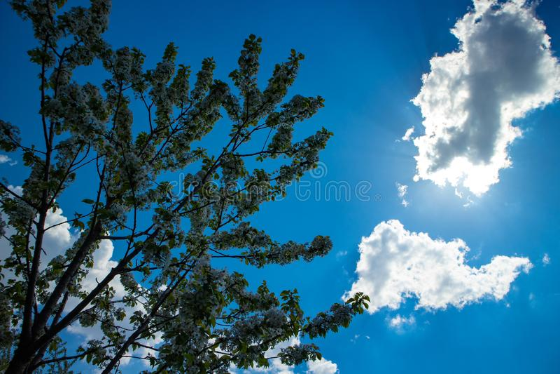 明亮的太阳发光低谷云彩 免版税库存照片