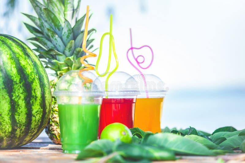 明亮的新鲜的健康汁液,果子,菠萝,在海的背景的西瓜 夏天,休息,健康生活方式拷贝空间 免版税库存照片