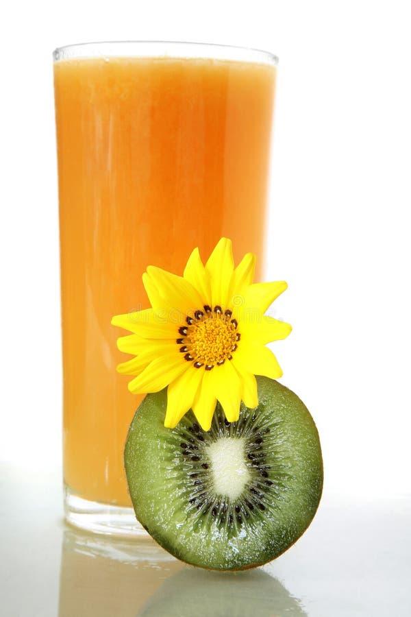 明亮的汁液桔子 免版税图库摄影