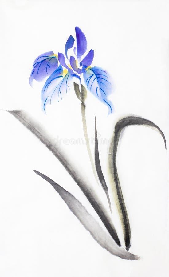 明亮的淡紫色蓝色虹膜 库存例证