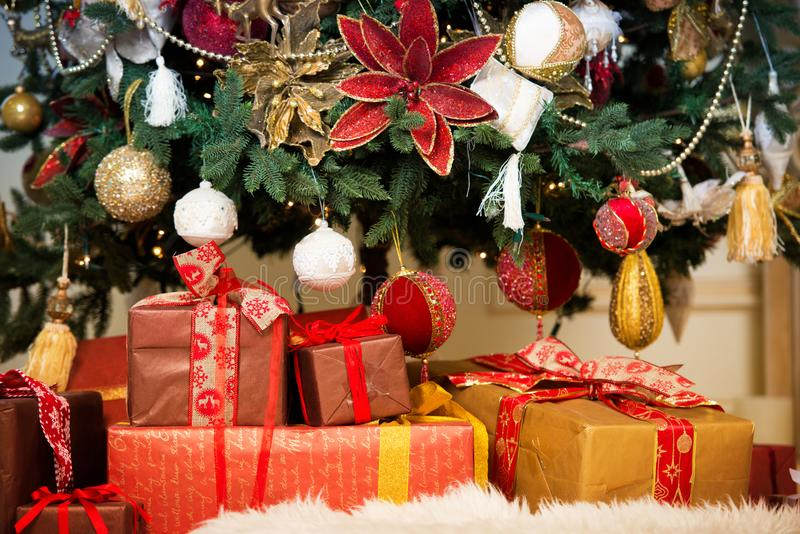 明亮的演播室在红色和金子射击了在一棵华美的豪华的圣诞树前面的礼物盒,装饰 免版税库存图片