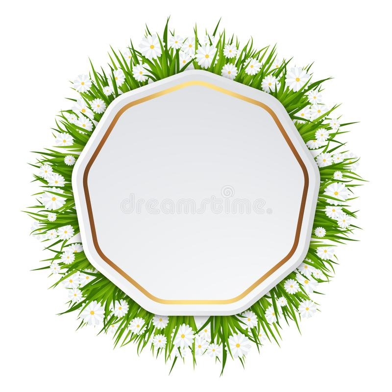 明亮的生日贺卡 与豪华的绿草的框架 向量例证