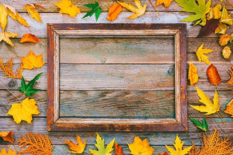 明亮的秋叶和画框在木背景与拷贝空间 为文本,祝贺,词组嘲笑,在上写字 免版税库存照片