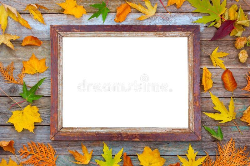 明亮的秋叶和相框在木背景与拷贝空间 假装为文本 库存图片