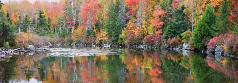 明亮的秋天树反射在佛蒙特 库存图片