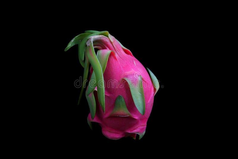 明亮的粉红红色龙果子 库存照片