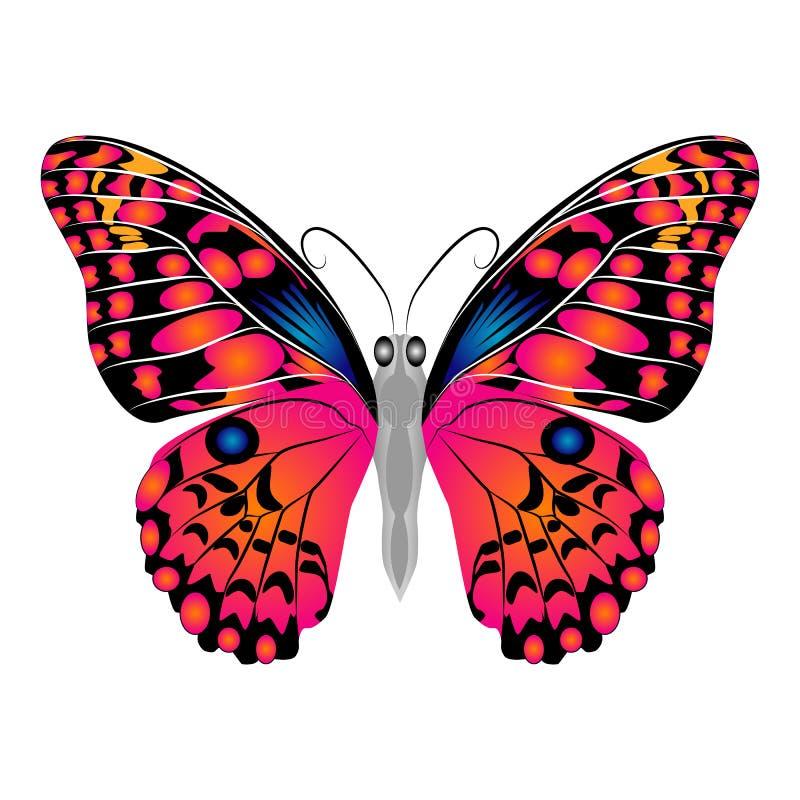 明亮的美丽的红色蝴蝶 查出的向量例证 皇族释放例证