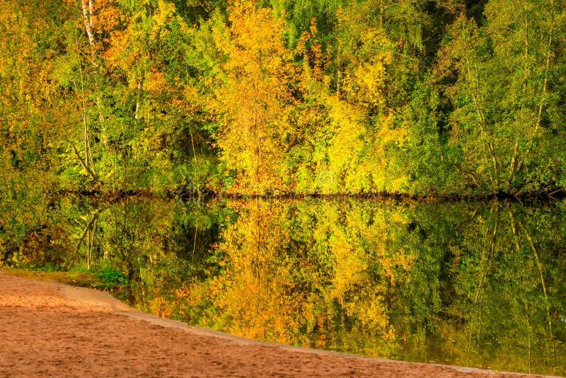 明亮的美好的秋天风景风景-树和湖 免版税库存照片