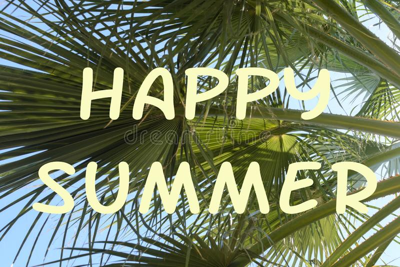 明亮的背景与题字愉快的夏天 棕榈树绿色分支反对蓝天的 与火光的照片 皇族释放例证