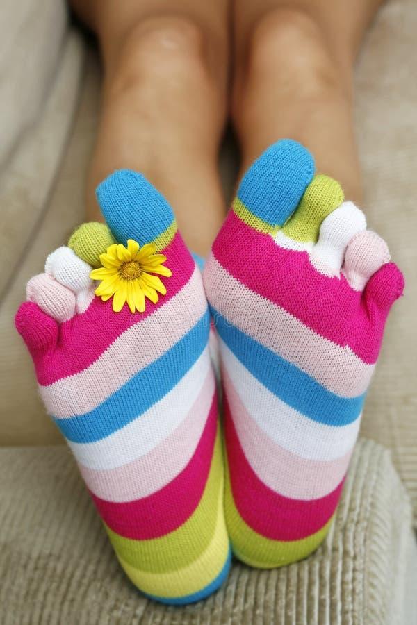 明亮的袜子 免版税图库摄影