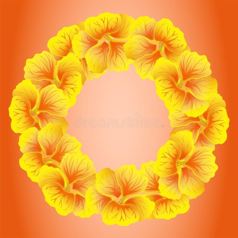 明亮的金莲花花圈 开花通配黄色 在红色背景隔绝的美好的花卉圈子 也corel凹道例证向量 卡片 向量例证