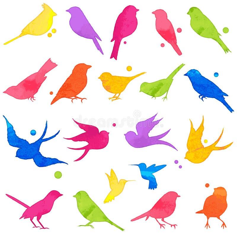 明亮的水彩鸟剪影的传染媒介汇集 向量例证