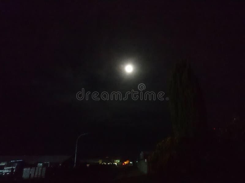 明亮的moon1 免版税图库摄影