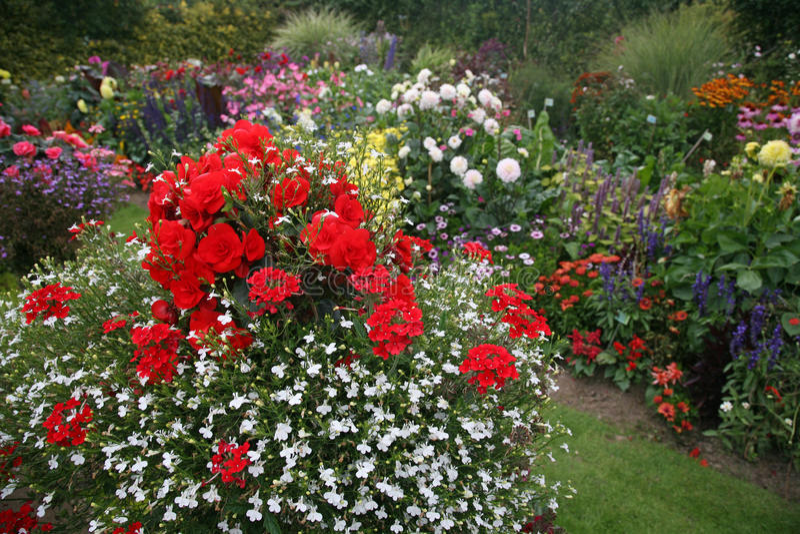 明亮&五颜六色的英国庭院边界 库存图片