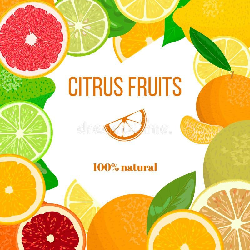 明信片的,问候,愿望卡片新鲜的柑橘水果装饰品 皇族释放例证