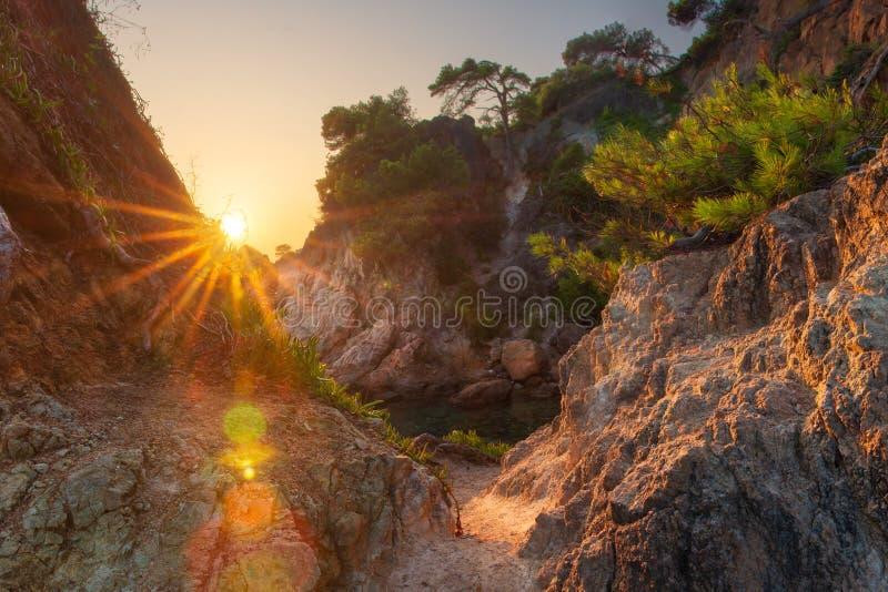 明媚的阳光在岩石海岸拜雷阿尔斯海 库存图片
