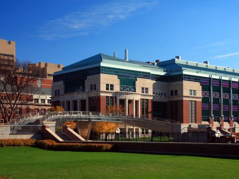 明尼苏达大学 免版税库存照片