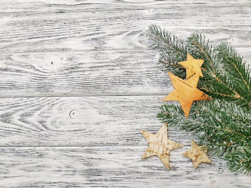 星和杉木分支-美好的冬天背景 库存照片