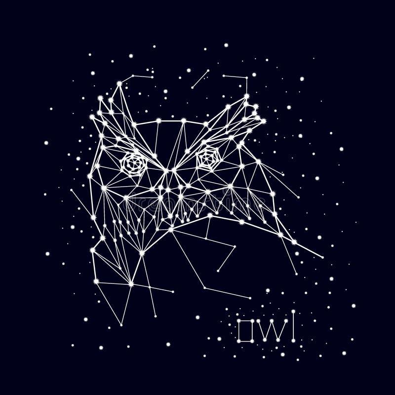 星座,猫头鹰 免版税库存照片