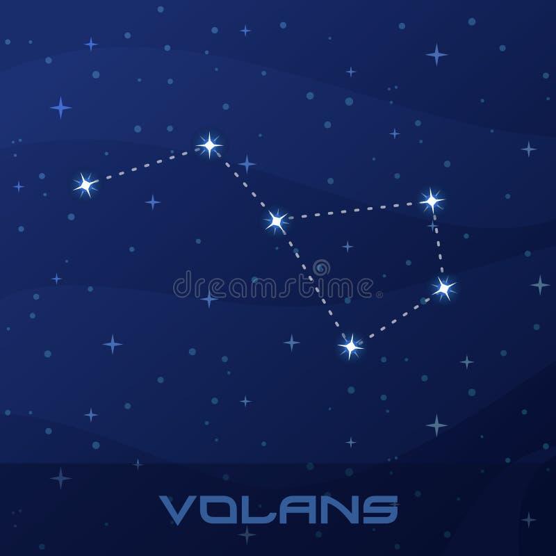 星座Volans,飞鱼夜星天空 向量例证