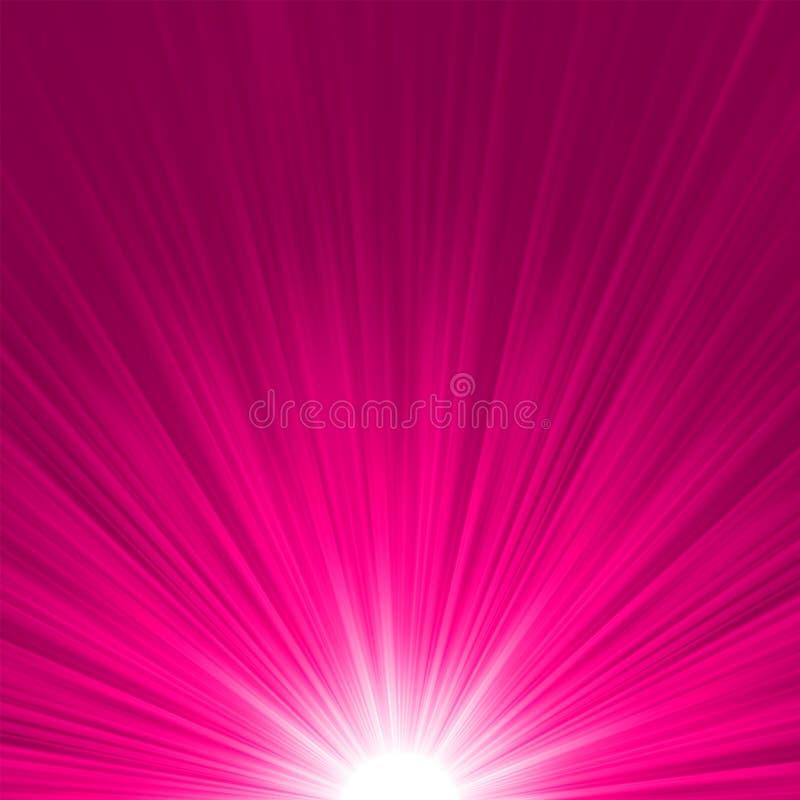 星形破裂的桃红色和空白火。 EPS 8 库存例证