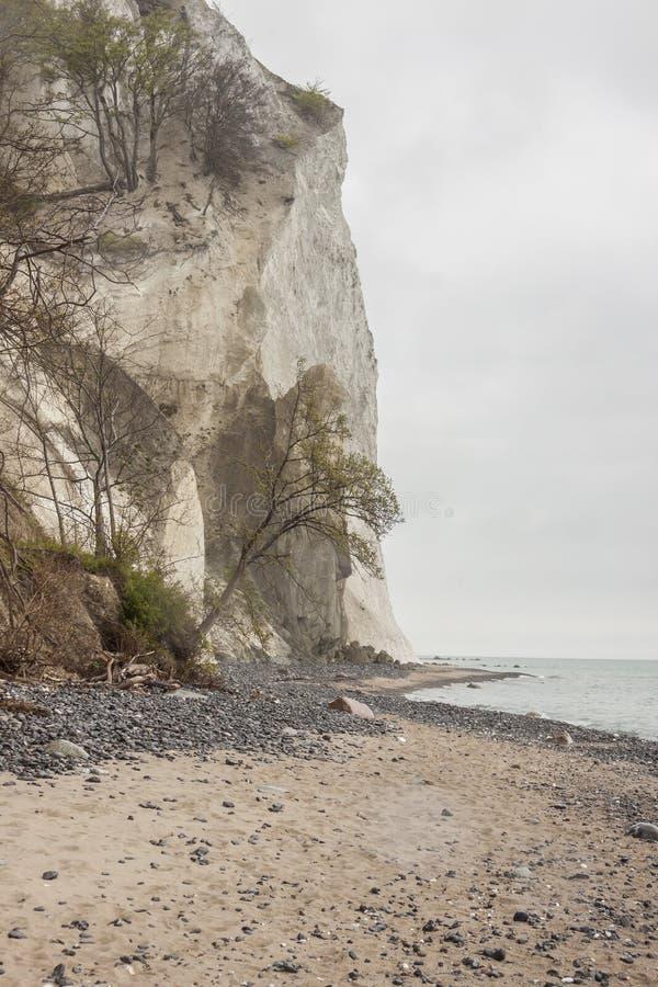 星期一,丹麦-白色峭壁 免版税库存图片