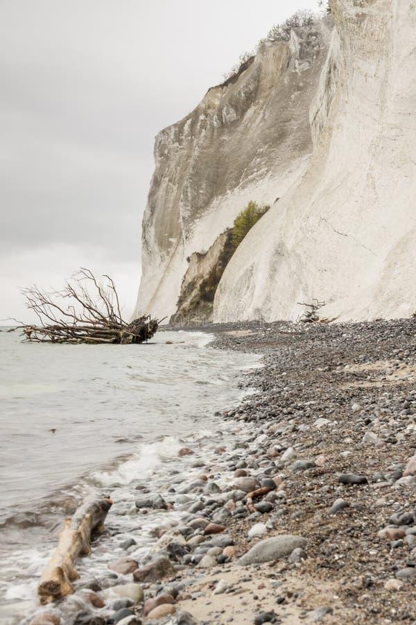 星期一,丹麦-白色峭壁 免版税库存照片