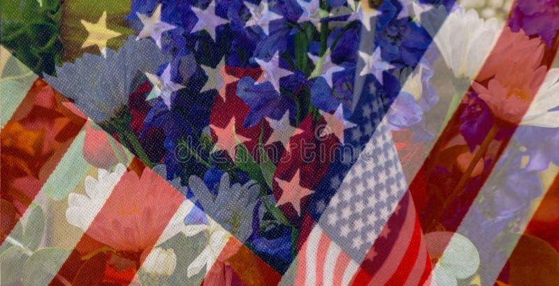 星条旗退色入花卉爱国花arran的背景与被编织的旗子在背景和图表星条旗 向量例证
