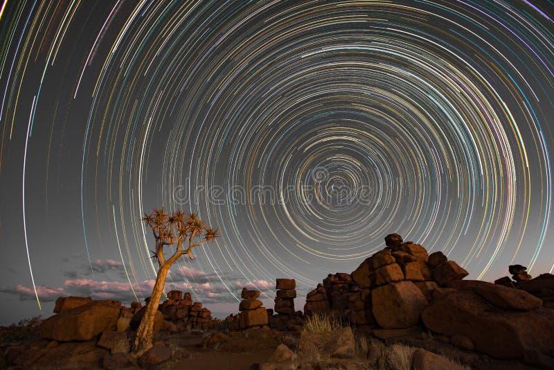 星落后在quivertrees的圈子 免版税图库摄影