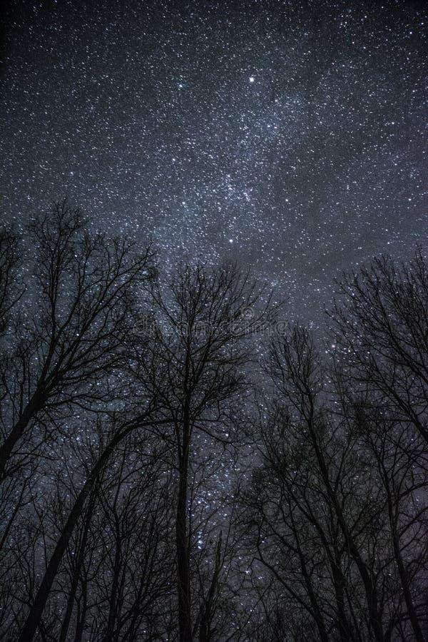 星系夜 免版税库存图片