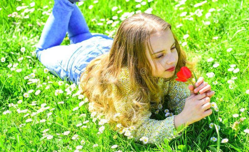 春假概念 孩子享受春天晴天,当说谎在有雏菊花的时草甸 女孩草位于 免版税库存图片